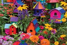 Bird houses / by Cheryl Fogg