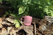 Evans Glass Pink Cup / Evans Glass pink cup stories express our motto: You make the coffee, We'll bring the cup.