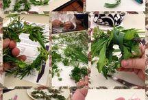Pantry - Seasonings/Salts/Spice Blends