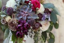 Flores plantas para VAYKUNTHA