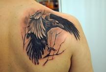 Φτερά