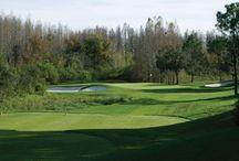 Tampa FL Golf