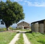 rare axample of typical farmhouse in struttural good condition