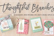 Thoughful Branches Bundle / Coming on August 2nd - this bundle of stamps & dies is fantastic and super versatile for year round use! / by Sarah Wills