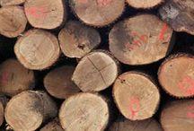 Timber info