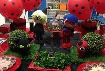 Festa Escolar - Tema Lady Bug