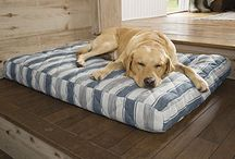 Orvis Dog Accessories / Take a look at our dog beds, gifts and pet accessories!