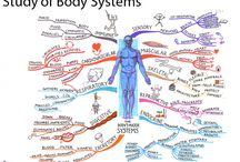 Tony Buzan / Mind maps created by Tony Buzan. More of Tony's work can be found @ www.TonyBuzan.com / by IQ Matrix