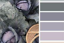Decoration Colors Paleta de Cores Colorea