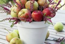 Fall/Thanksgiving / Crafts and Decor Ideas / by Jeannie Young