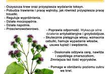 ziołowe /zdrowe