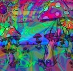 The psychedelic psyche