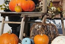 halloween / by Rhonda Lura