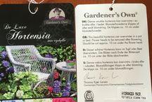 Trädgård egen