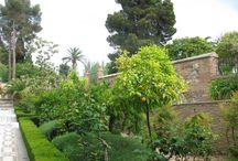 #alhambra #granada