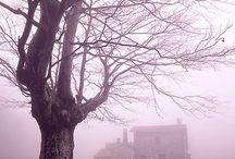 Spooky Homes