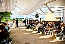 Aquarium Weddings