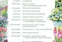 Семинары Татьяны Койсман