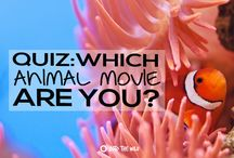 Quiz Board / Take part in all our travel and wildlife based personality quizzes from Frontier | www.frontier.ac.uk
