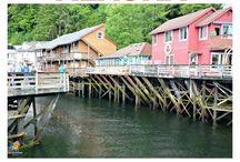 TRAVEL - ALASKA / Travel & Restaurant Reviews all about Alaska