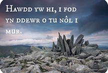 Welsh ❤