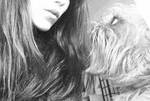 Amores perros / Travis, Blondie y Verdy