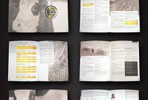rapporter / presentasjon