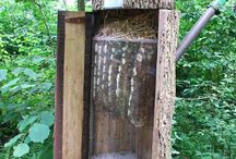 Bartnictwo / Forest bee-keeping
