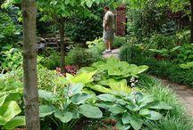 Gardens are little sanctuaries of God
