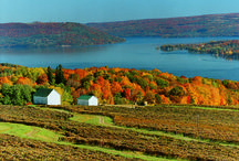 Fall Foliage / The Corning & the Southern Finger Lakes is perfect for fall foliage lovers, it's the ultimate autumn experience. The vineyards explode with color and the scent of the grape harvest.  The deep blue of Keuka Lake is cradled between outrageously colorful hills, providing the perfect backdrop for the terrific restaurants and quaint small towns.