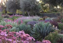 Tutorials for the garden