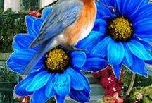flores y pajaros