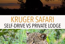South Africa / Tips, advice, and things to do during your travel to South Africa. Johannesburg | Cape Town | Cape of Good Hope | Kruger National Park | Pretoria | Port Elizabeth
