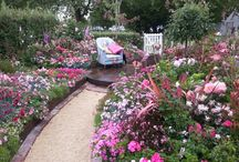 Garden & Flower Shows / Pictures of some amazing gardens from Ellerslie and Melbourne shows!
