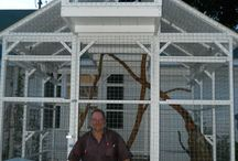 Catio and Outdoor Cat Ladders / Safe outdoor enclosures for your cat. Catios. Cat ladders. Outdoor cats