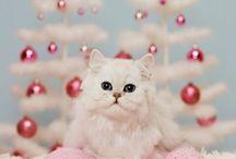 Cuteness overload / by Sonia Garcia