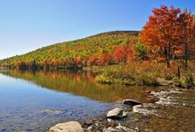 Fun this Fall / Fun things to do in Maine in the Fall. / by University Credit Union