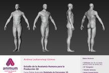 HUMANO REALISTA - Animum / Ejercicios - Humano realista