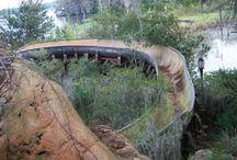 Abandoned waterpark disney