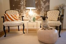 Dogs - pugs / by Chateau Nico