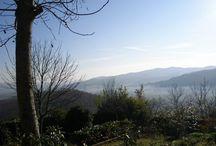 alta valle tevere / una raccolta di immagini della nostra Valle