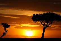 Kenya holiday safaris. / Kenya is a country where safaris was born, the safaris are affordable and memorable.