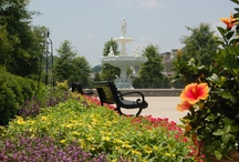 Favorite Places & Spaces / by Cityof Franklin TN