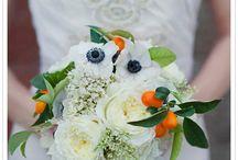 Orange wed