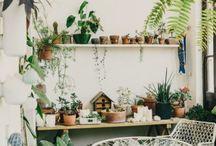 Fresh & Green / Living decor