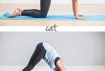 Yoga, stretching, well being