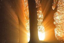 schitterring door het licht