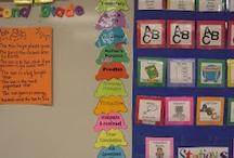 School - Organization