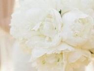 Wedding Flowers // Our Wedding Dreams / by Erica Hildebrandt