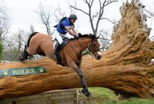 3 Day Eventing / The rush, the excitement, the thrills! Everything about 3 day eventing!